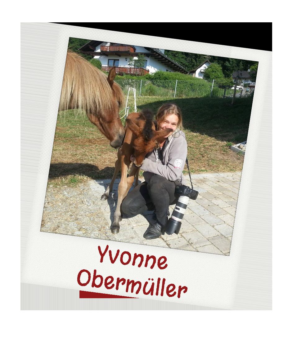 Fotografin, Niederbayern, Bayern, Bayerischer Wald, Hochzeit, Pferd, Haustier,