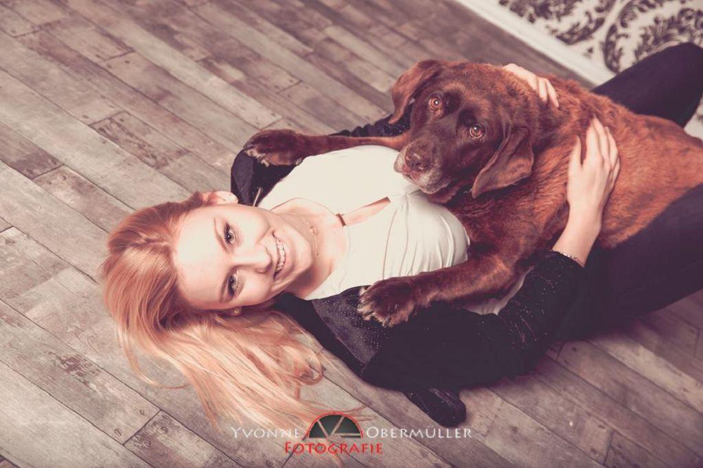 Hund, Hunde im studio , Hundefotografie,Hundefotografin Bayern