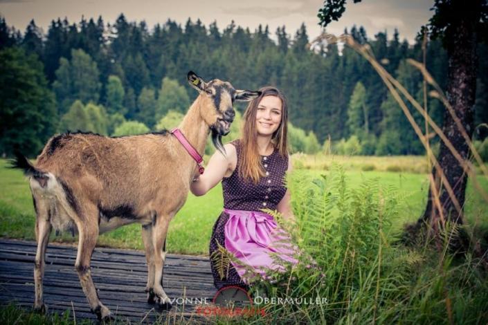 Ziege, Ziegenfoto, Ziegenfotoshooting, Fotografin Freyung/Grafenau