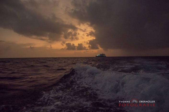 Tauchschiff, Malediven, Tauchen, Unterwasserfotografie