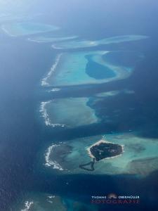 Malediven, Tauchen, Urlaub